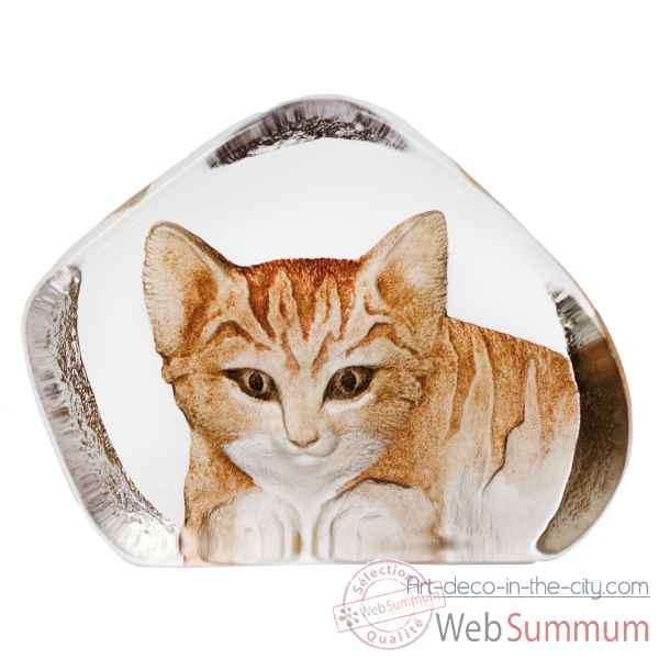 Chat, brun, grand Mats Jonasson -33868