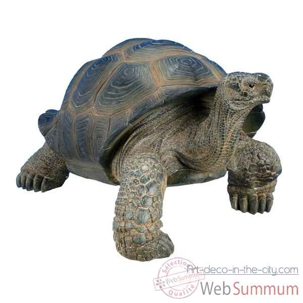 Tortue mm 46 cm Riviera system -200109